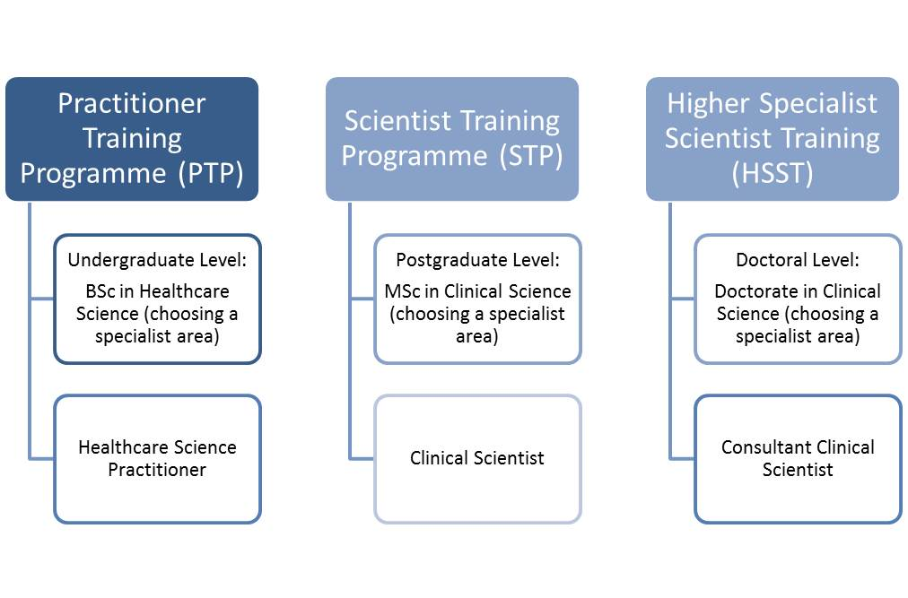 Healthcare Science Job roles diagram