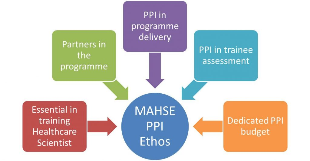MAHSE PPI diagram